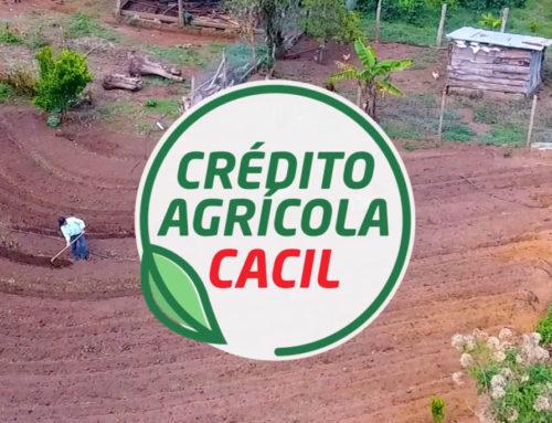 Crédito Agrícola CACIL 2020